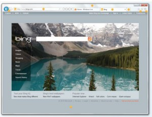 IE9 browser window
